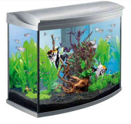 Tetra AquaArt Evolution Line аквариумный комплекс 130 л