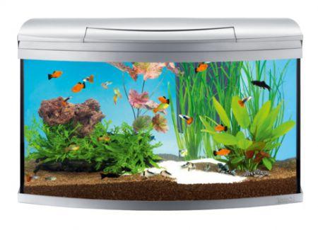 Tetra AquaArt Evolution Line аквариумный комплекс 100 л